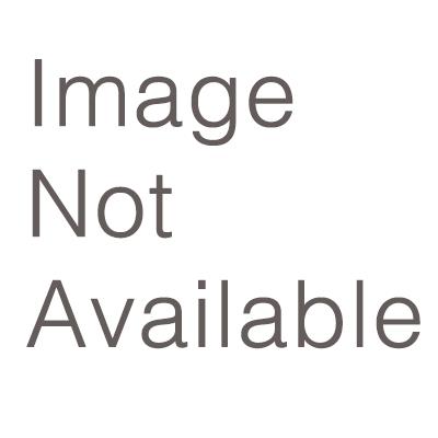 OSAE 2020 Annual Conference Logo